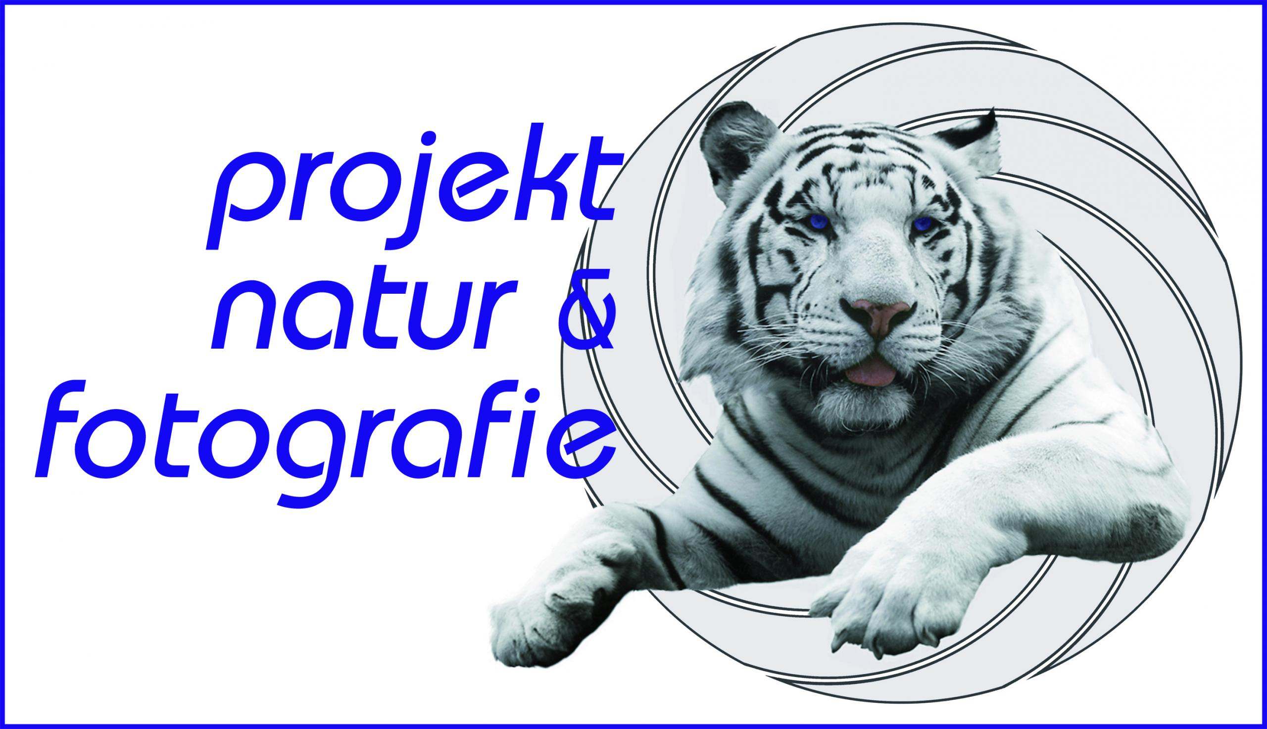Logo pnf mittel scaled